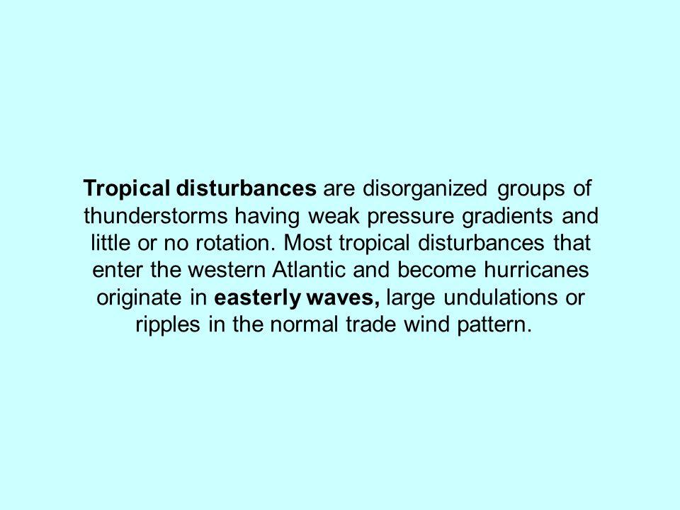 Tropical disturbances are disorganized groups of