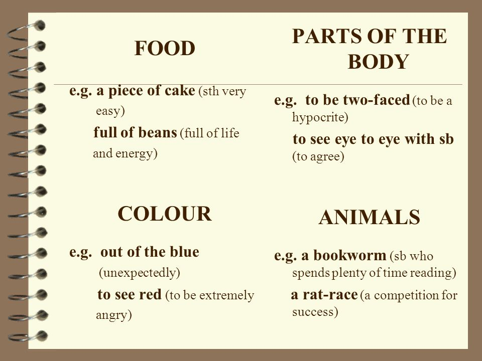 PARTS OF THE BODY ANIMALS FOOD COLOUR