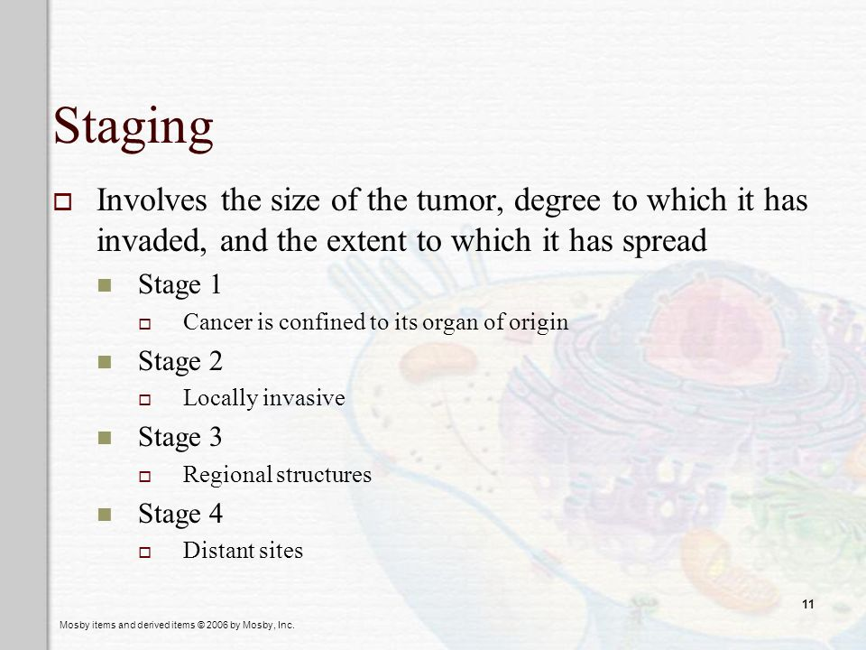 Staging Involves the size of the tumor, degree to which it has invaded, and the extent to which it has spread.