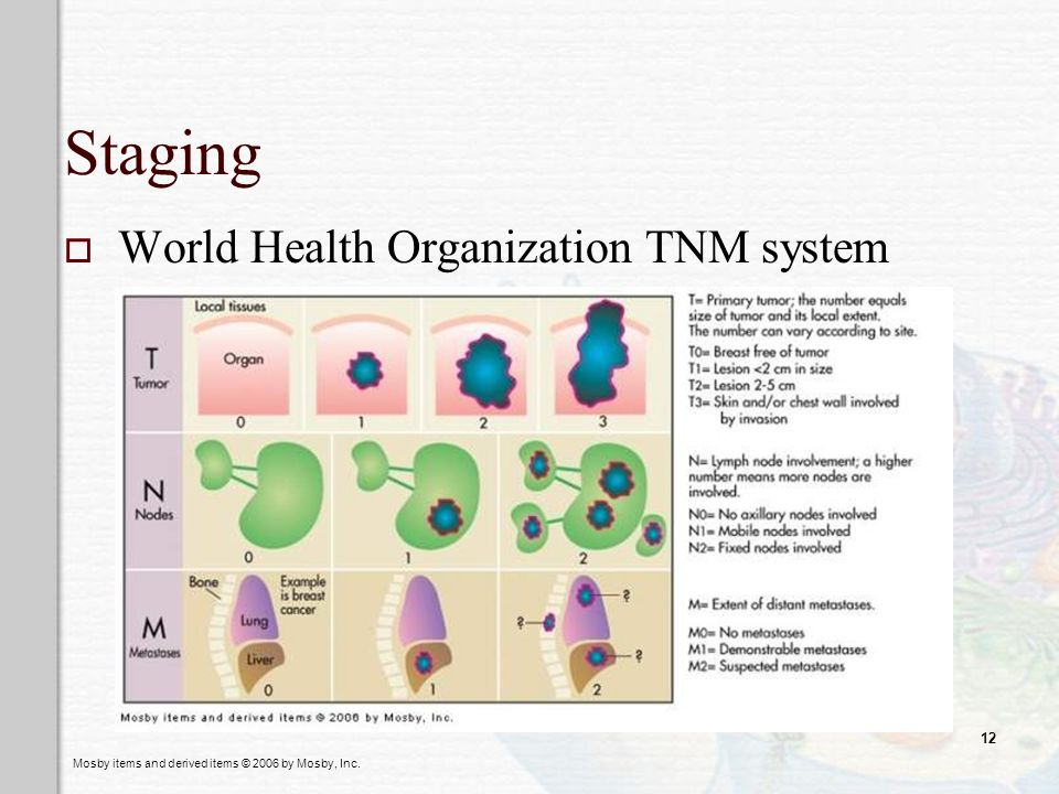 Staging World Health Organization TNM system