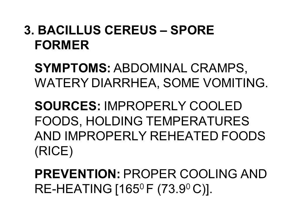 3. BACILLUS CEREUS – SPORE FORMER