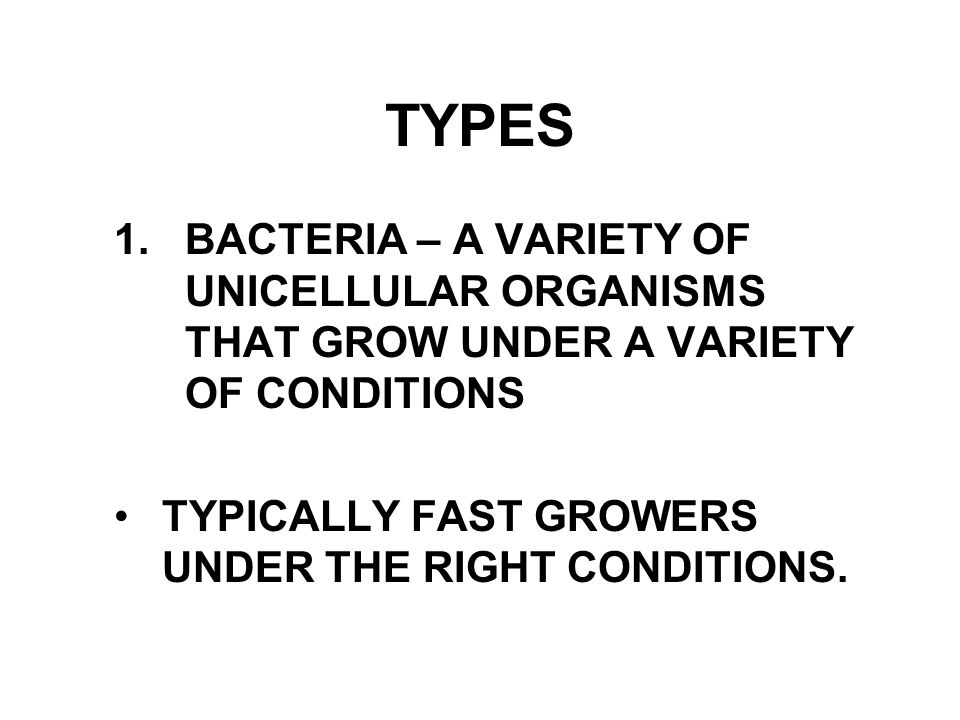TYPES 1. BACTERIA – A VARIETY OF UNICELLULAR ORGANISMS THAT GROW UNDER A VARIETY OF CONDITIONS.