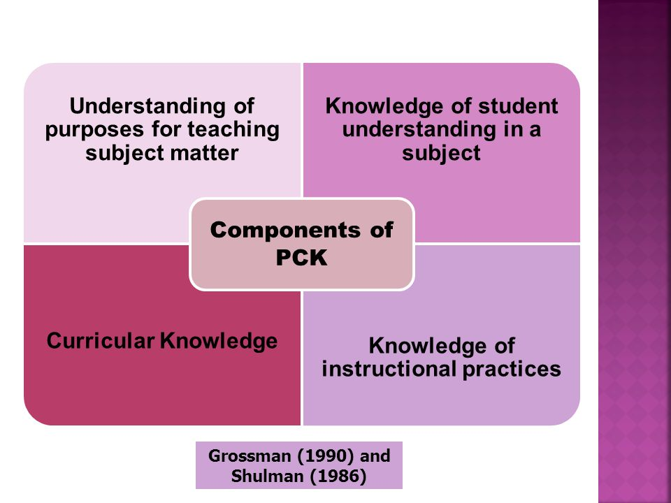 Understanding of purposes for teaching subject matter