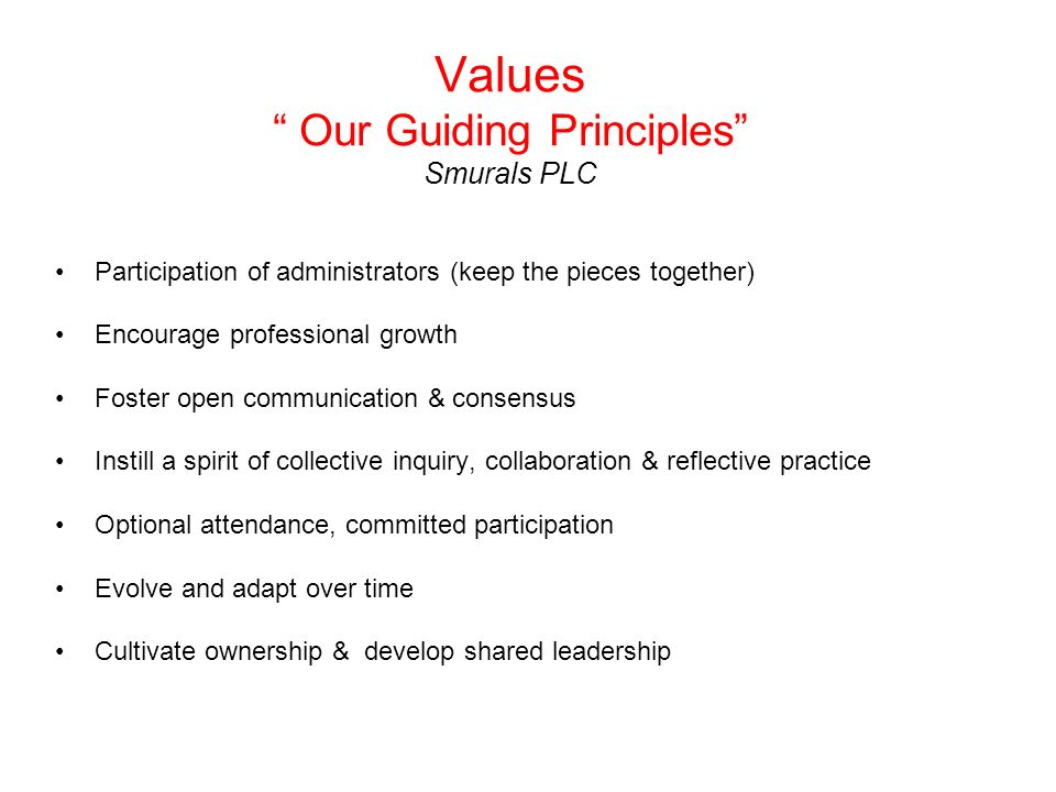 Values Our Guiding Principles Smurals PLC