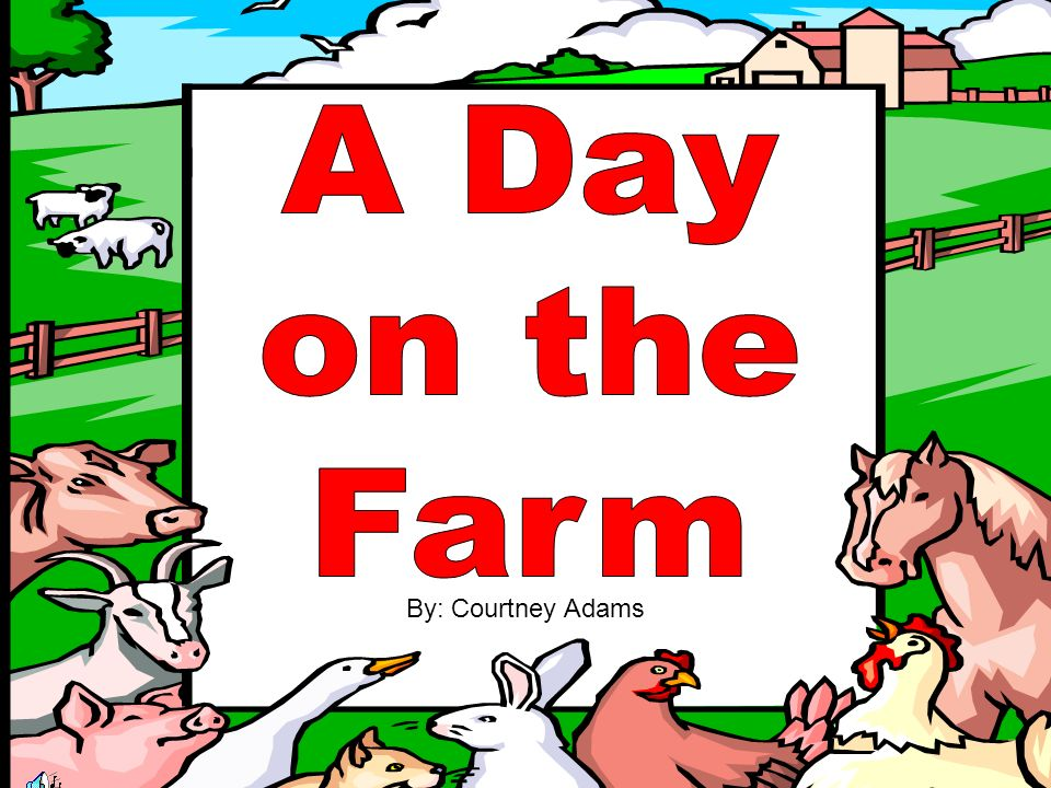 A Day on the Farm By: Courtney Adams