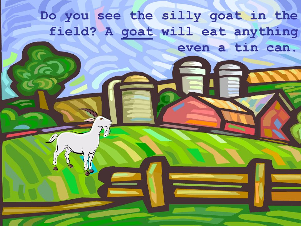 Do you see the silly goat in the field A goat will eat anything