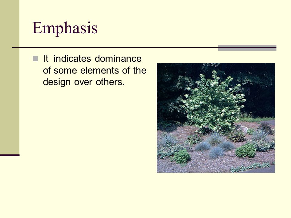 Emphasis It indicates dominance of some elements of the design over others.