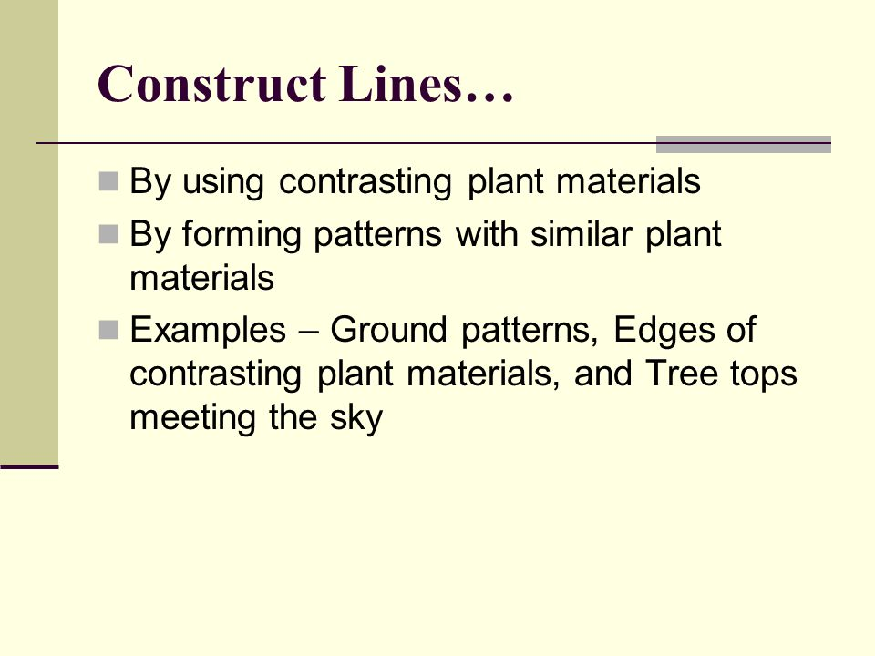 Construct Lines… By using contrasting plant materials
