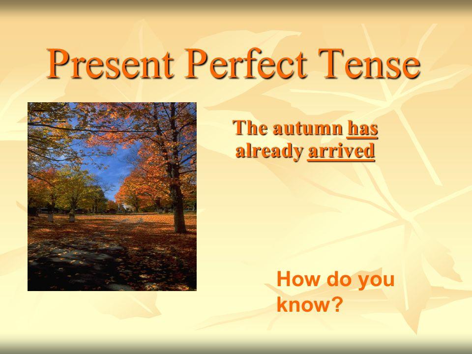 The autumn has already arrived