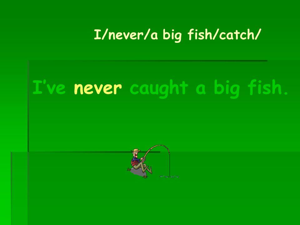 I've never caught a big fish.