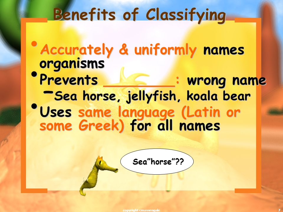 Benefits of Classifying