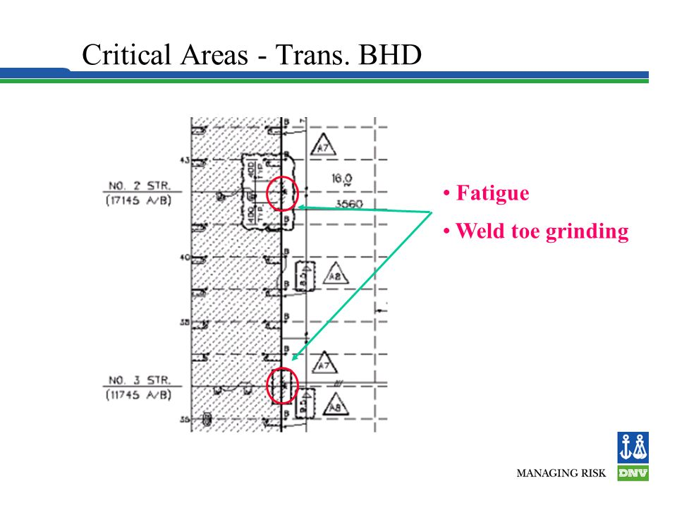 Critical Areas - Trans. BHD