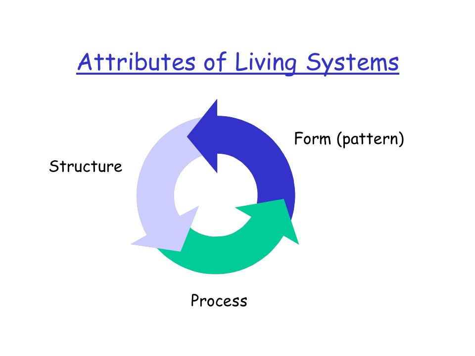Attributes of Living Systems