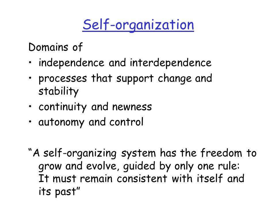 Self-organization Domains of independence and interdependence