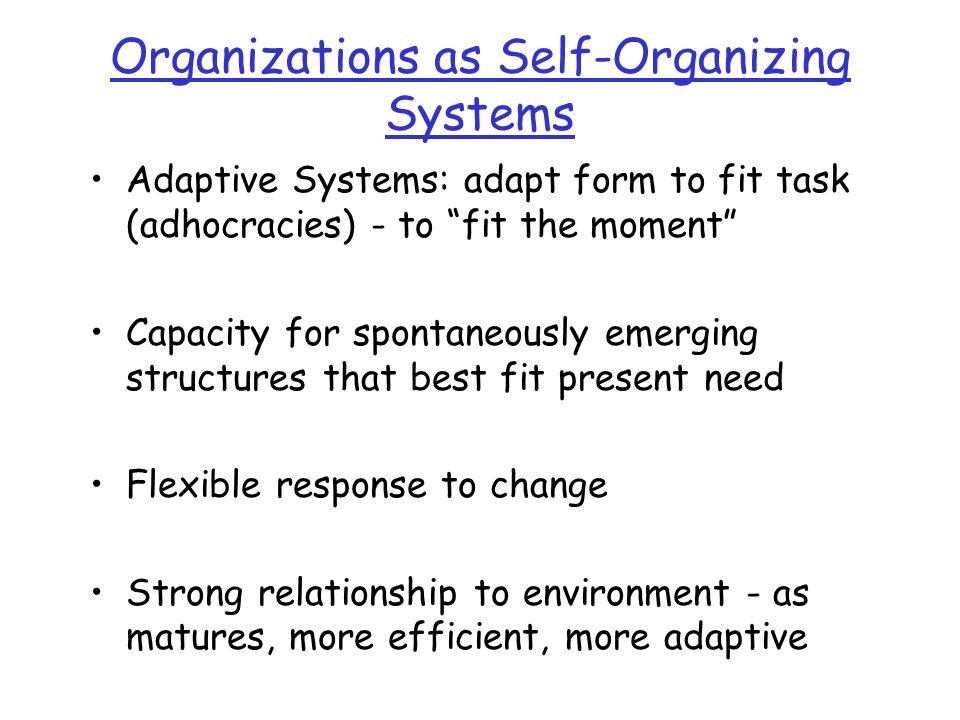Organizations as Self-Organizing Systems