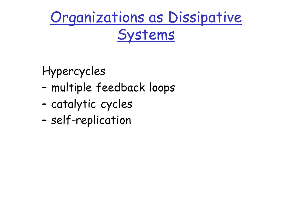 Organizations as Dissipative Systems