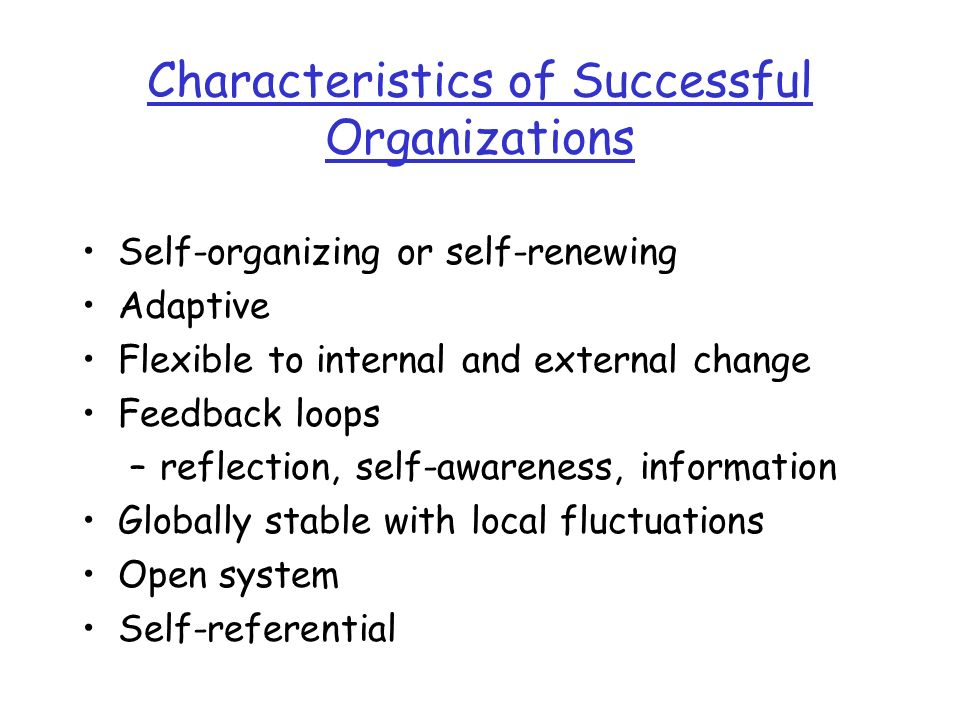 Characteristics of Successful Organizations