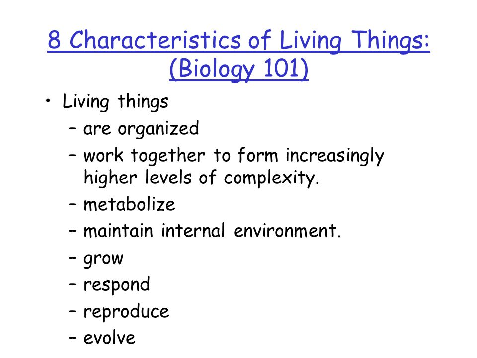 8 Characteristics of Living Things: (Biology 101)