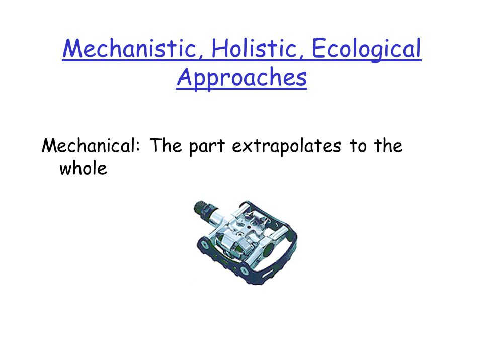 Mechanistic, Holistic, Ecological Approaches