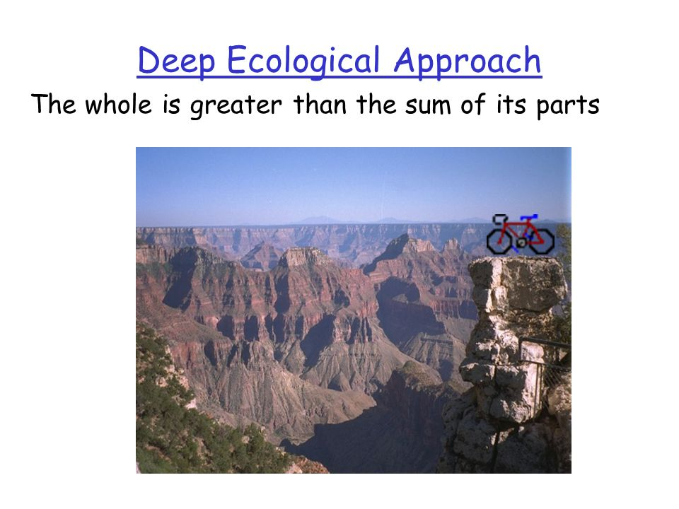 Deep Ecological Approach