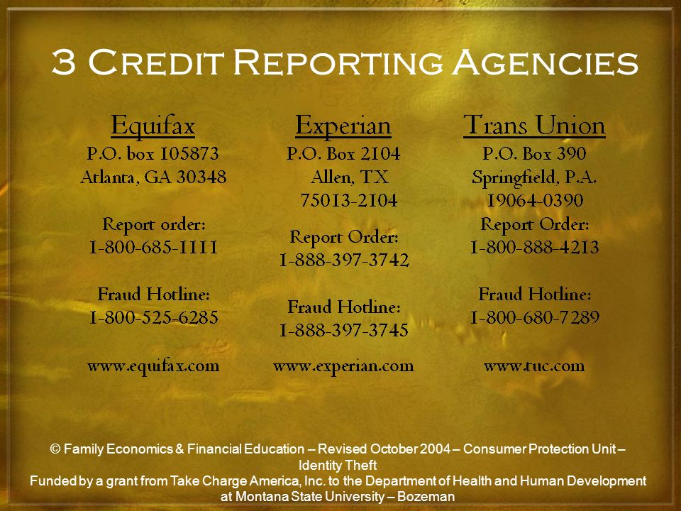 3 Credit Reporting Agencies