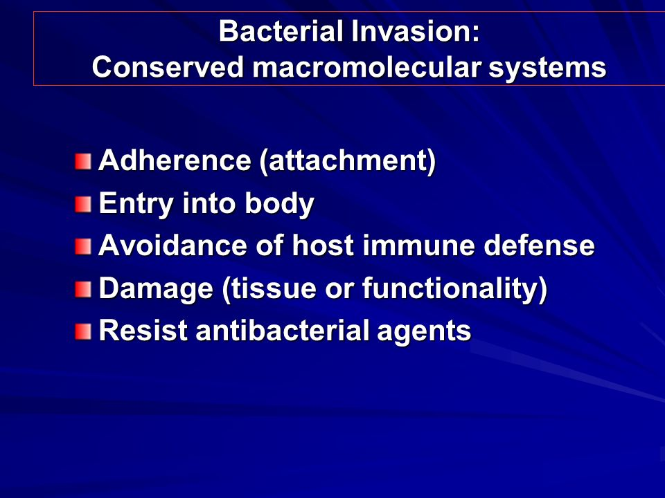 Bacterial Invasion: Conserved macromolecular systems