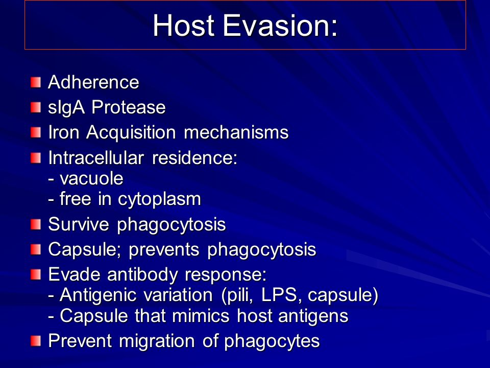 Host Evasion: Adherence sIgA Protease Iron Acquisition mechanisms
