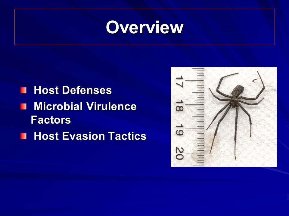 Overview Host Defenses Microbial Virulence Factors