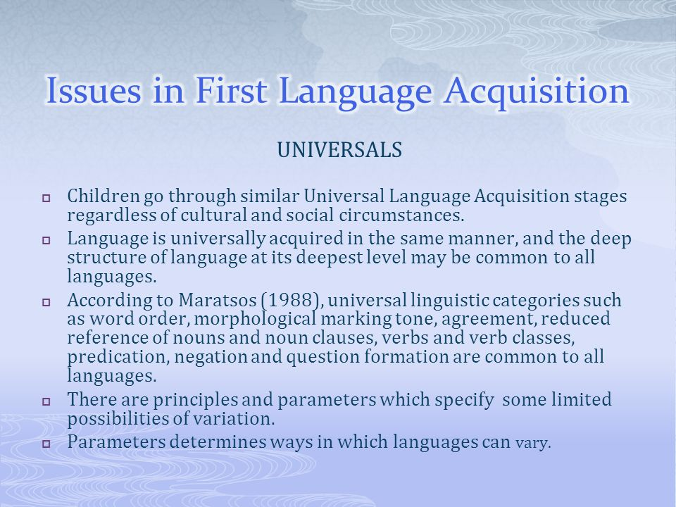 Issues in First Language Acquisition
