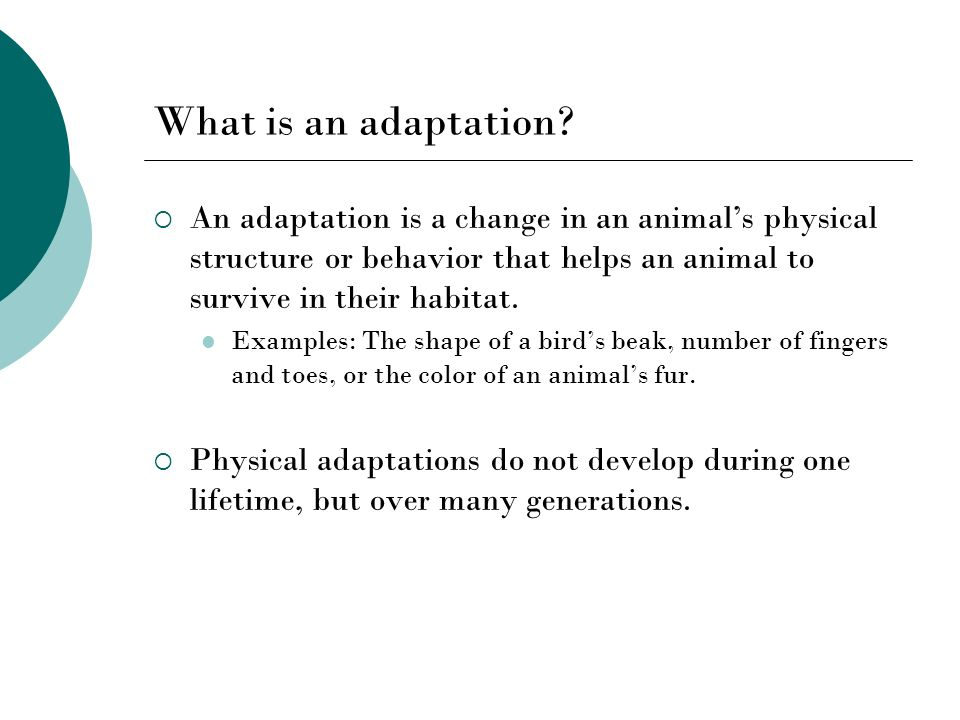 What is an adaptation An adaptation is a change in an animal's physical structure or behavior that helps an animal to survive in their habitat.