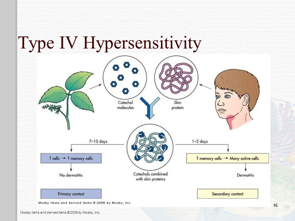 Type IV Hypersensitivity