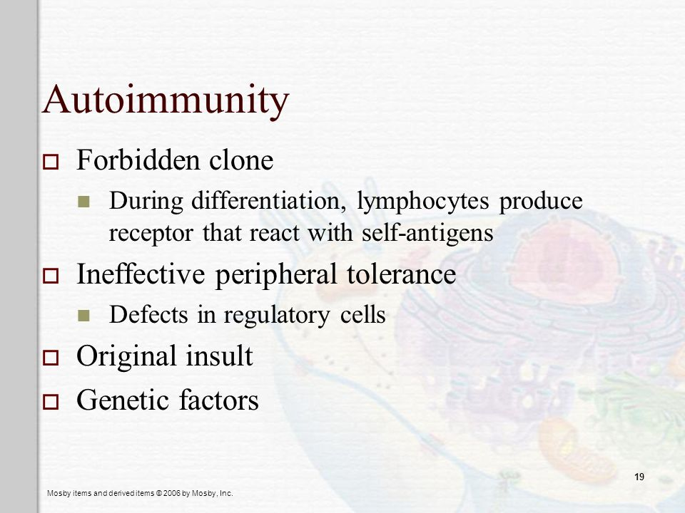 Autoimmunity Forbidden clone Ineffective peripheral tolerance