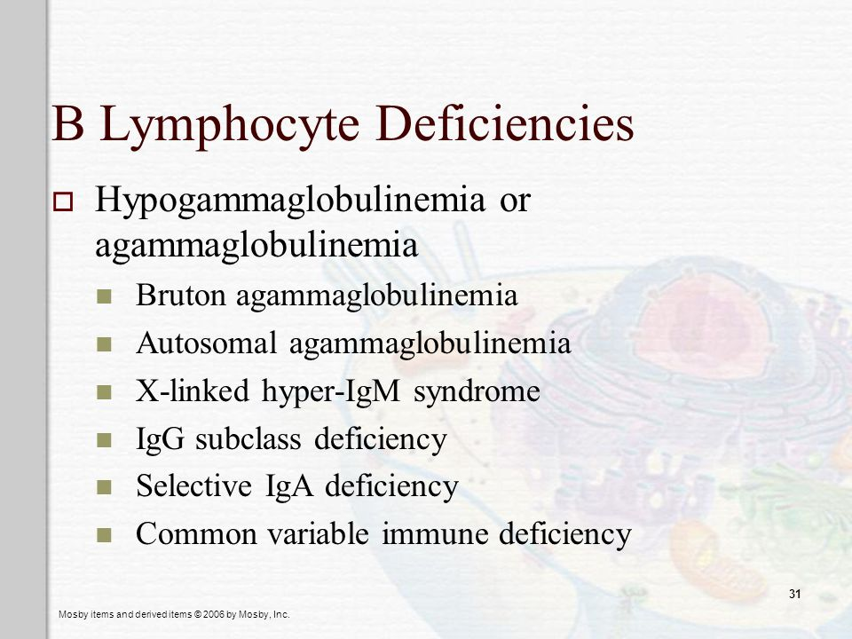 B Lymphocyte Deficiencies