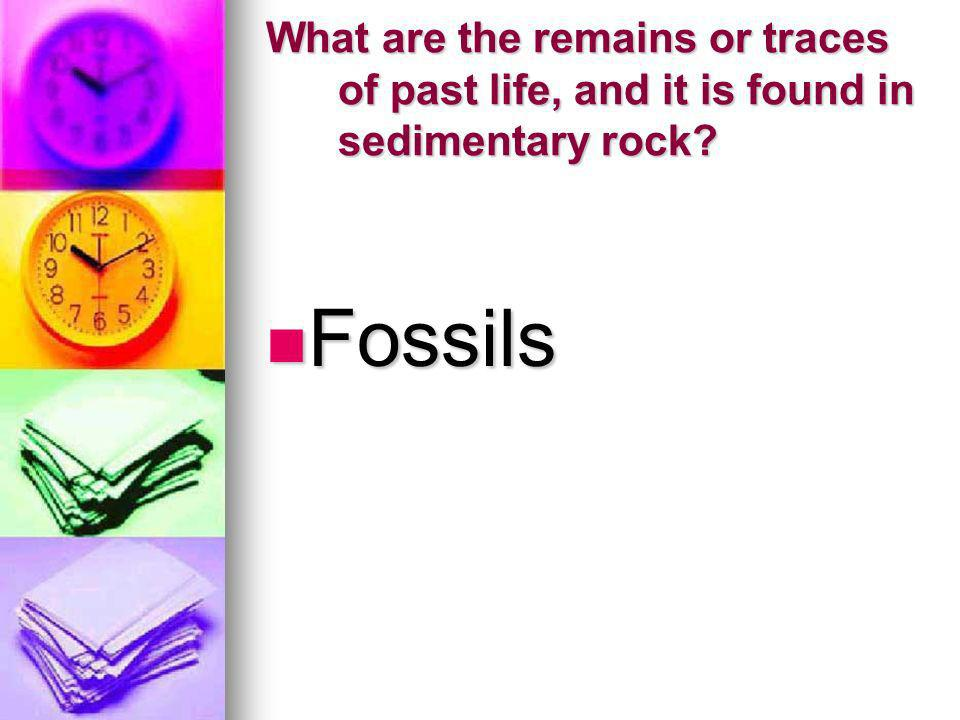 What are the remains or traces of past life, and it is found in sedimentary rock