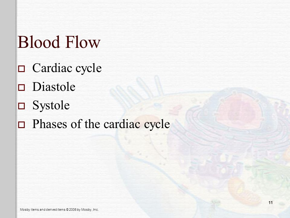 Blood Flow Cardiac cycle Diastole Systole Phases of the cardiac cycle