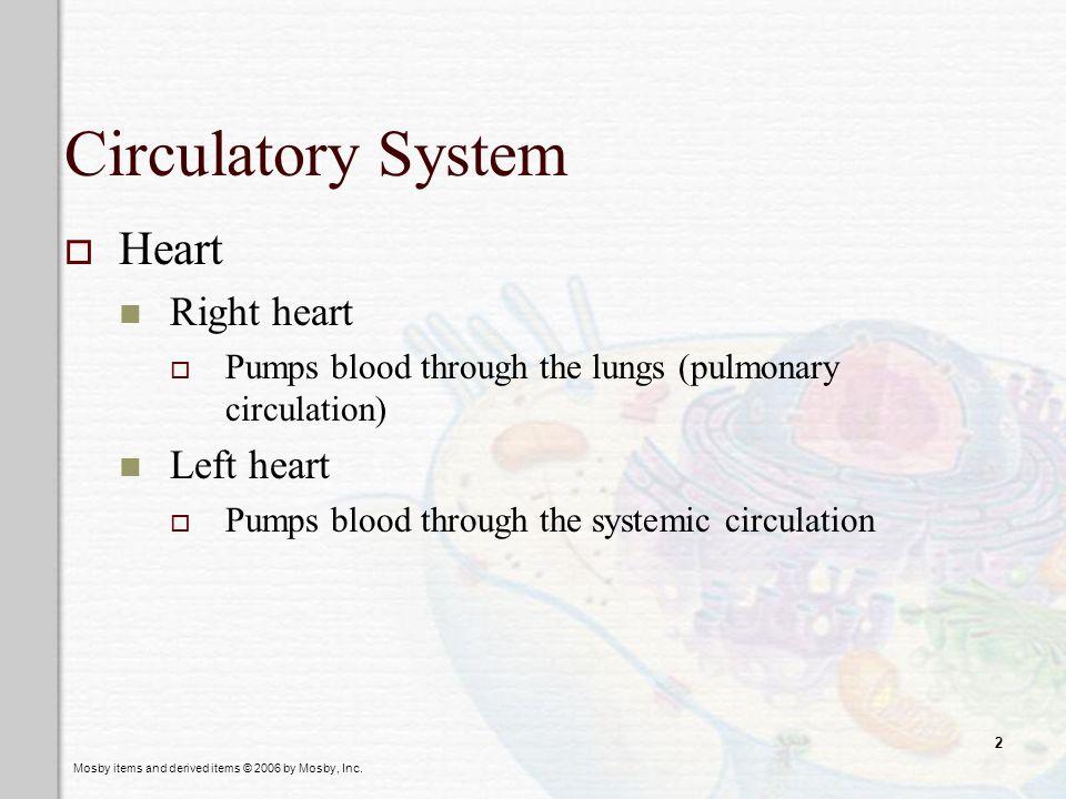 Circulatory System Heart Right heart Left heart
