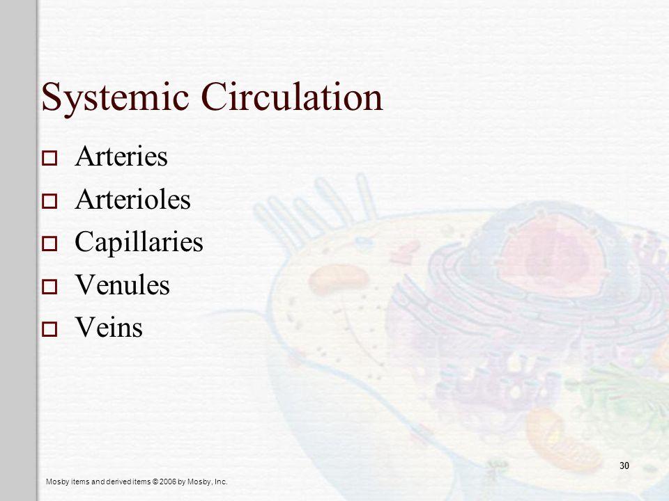Systemic Circulation Arteries Arterioles Capillaries Venules Veins