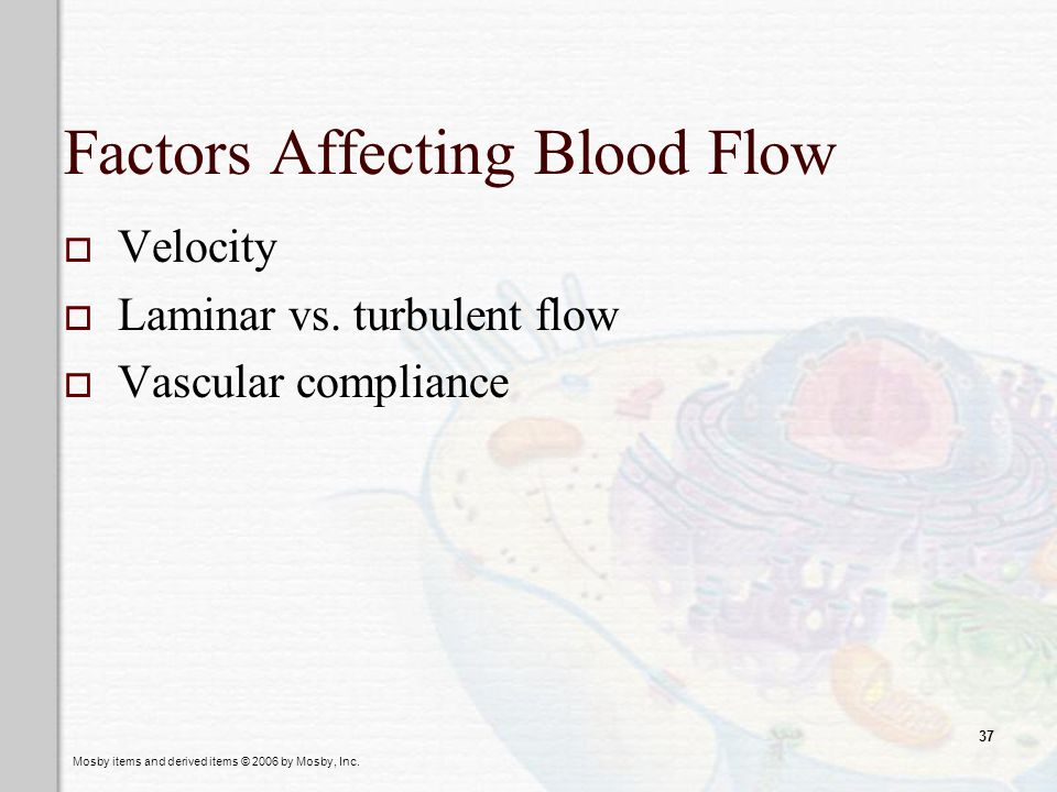 Factors Affecting Blood Flow