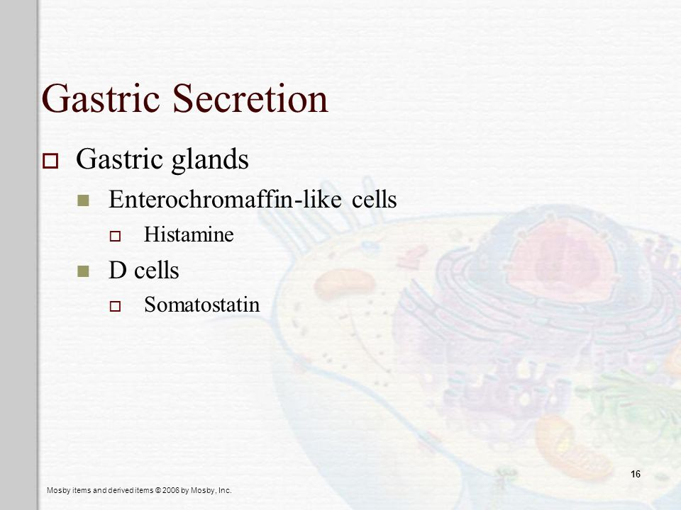 Gastric Secretion Gastric glands Enterochromaffin-like cells D cells