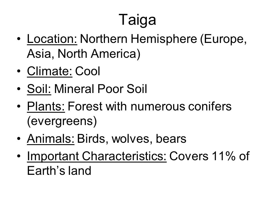 Taiga Location: Northern Hemisphere (Europe, Asia, North America)