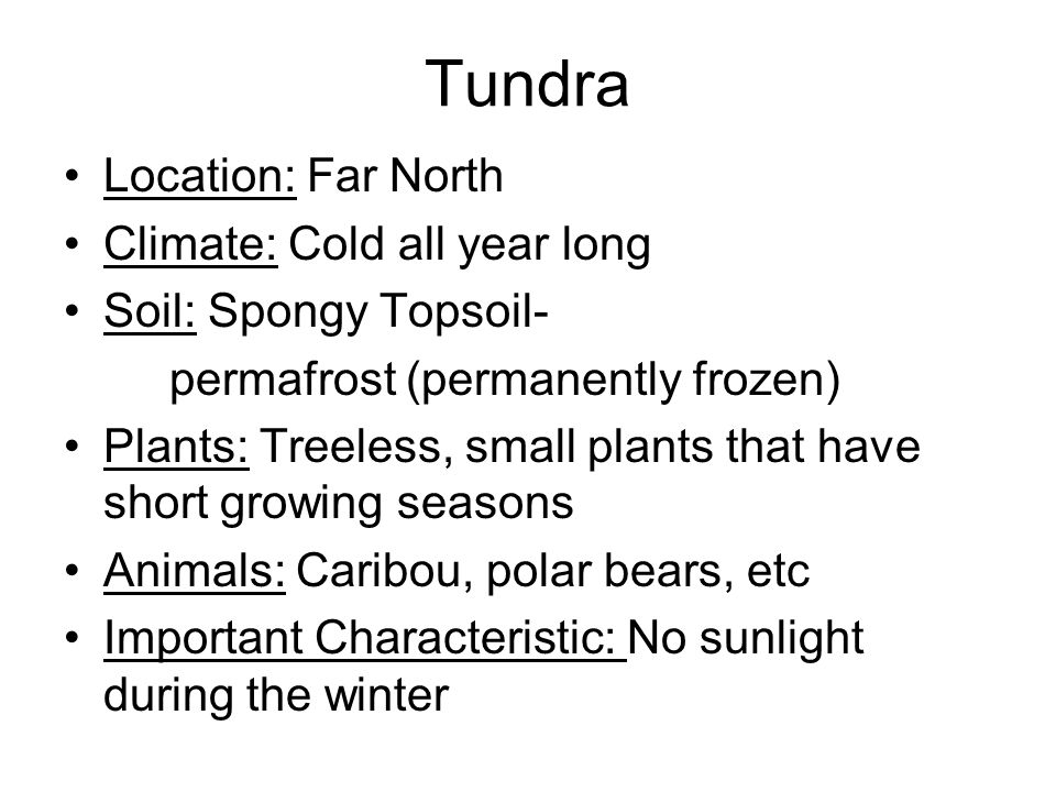 Tundra Location: Far North Climate: Cold all year long