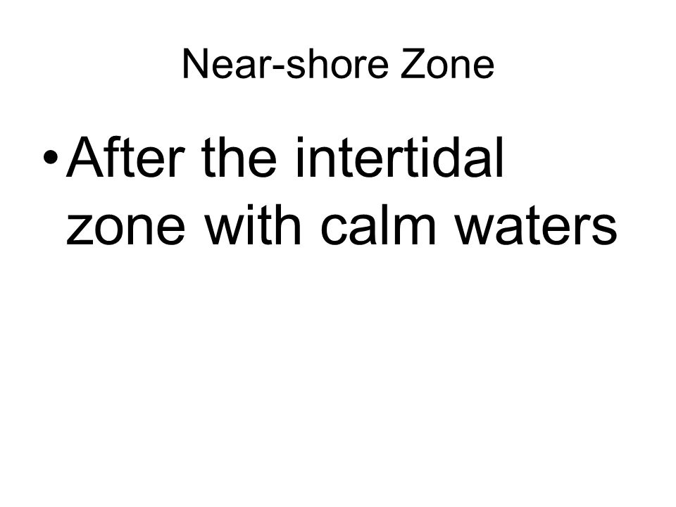 After the intertidal zone with calm waters