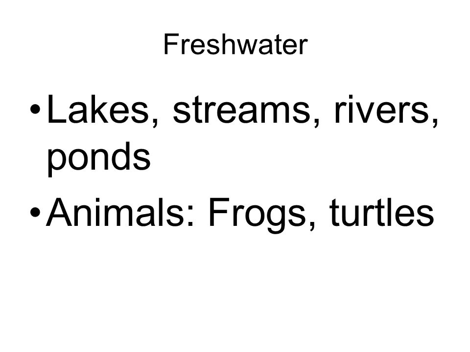 Lakes, streams, rivers, ponds Animals: Frogs, turtles