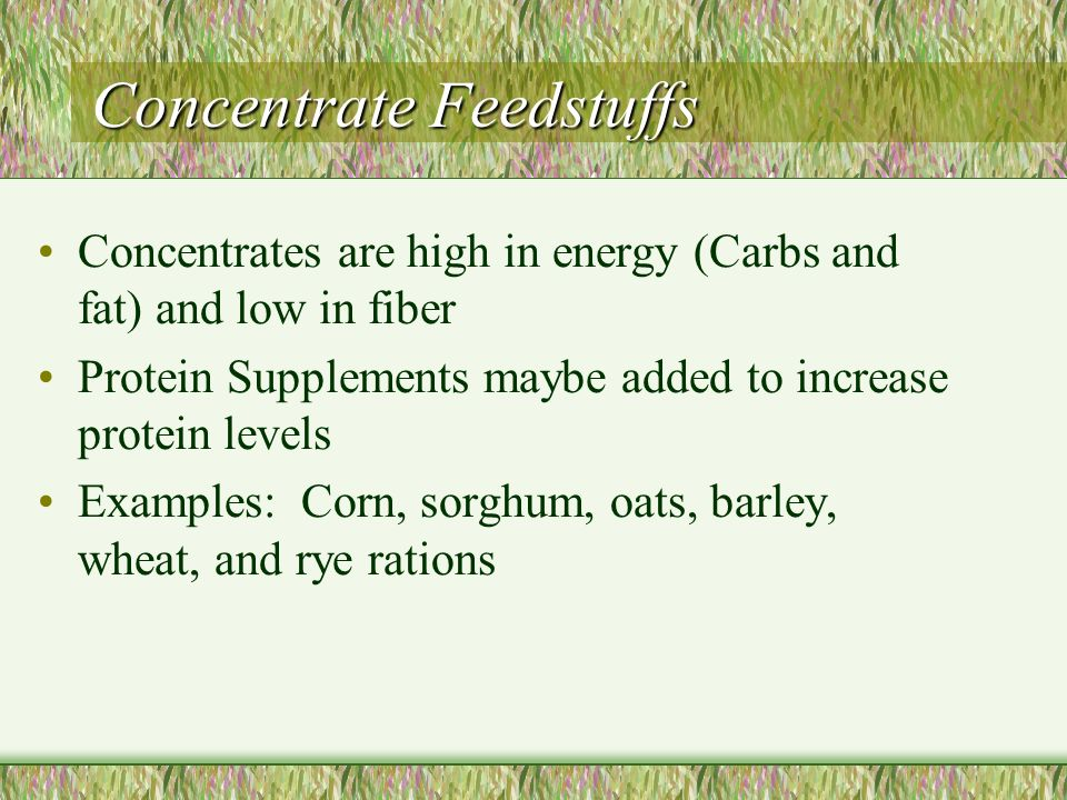 Concentrate Feedstuffs