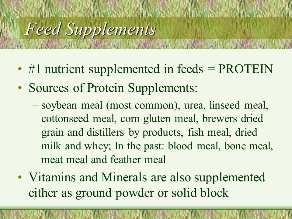 Feed Supplements #1 nutrient supplemented in feeds = PROTEIN
