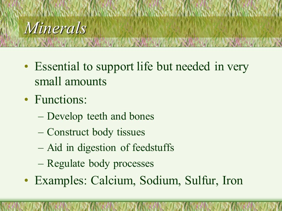 Minerals Essential to support life but needed in very small amounts