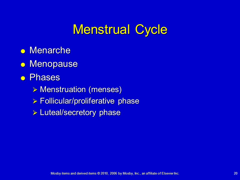 Menstrual Cycle Menarche Menopause Phases Menstruation (menses)