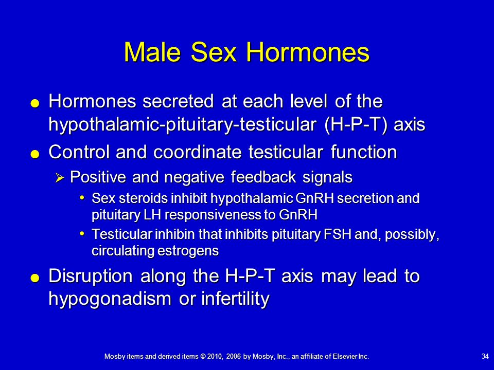 Male Sex Hormones Hormones secreted at each level of the hypothalamic-pituitary-testicular (H-P-T) axis.