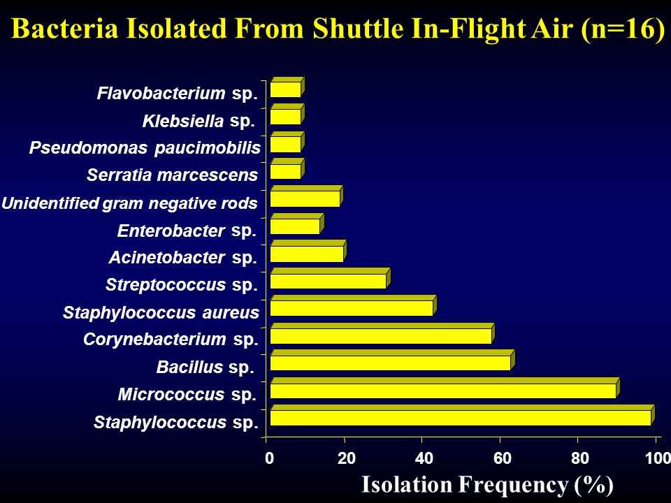 Bacteria Isolated From Shuttle In-Flight Air (n=16)