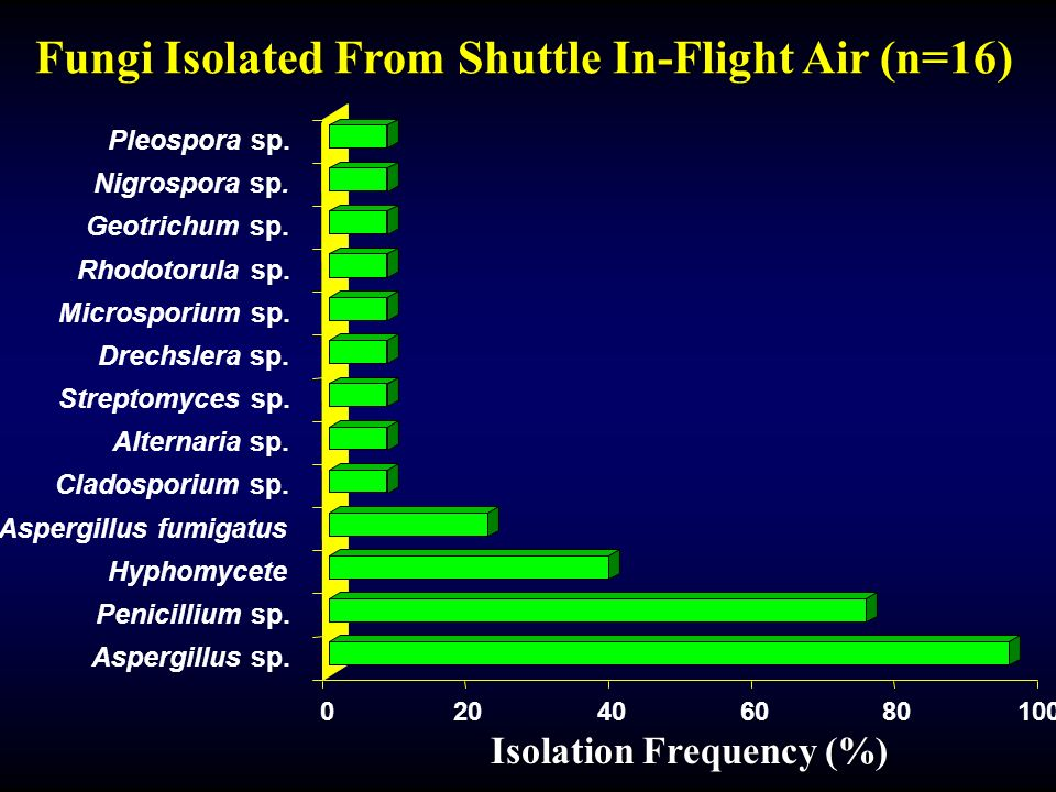 Fungi Isolated From Shuttle In-Flight Air (n=16)
